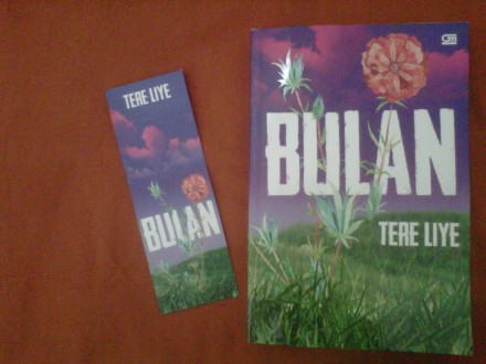 novel bulan tere liye